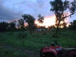 sunset at the cattle station