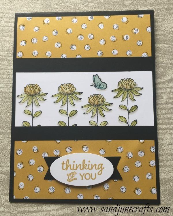 2016 Sale-A-Brations Flowering Fields