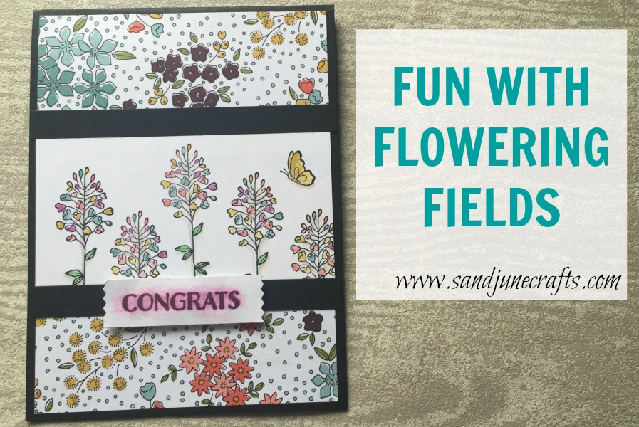 Fun With Flowering Fields