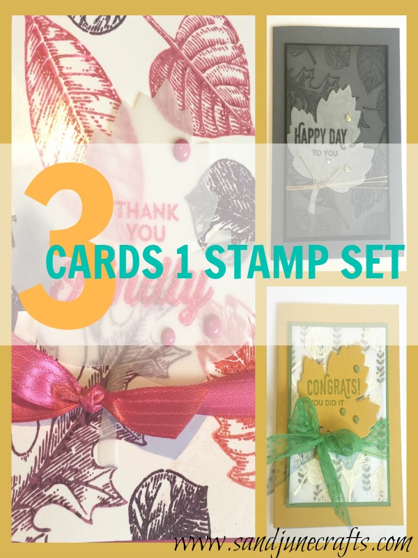 3 Cards 1 Stamp Set – Vintage Leaves By Stampin' Up!